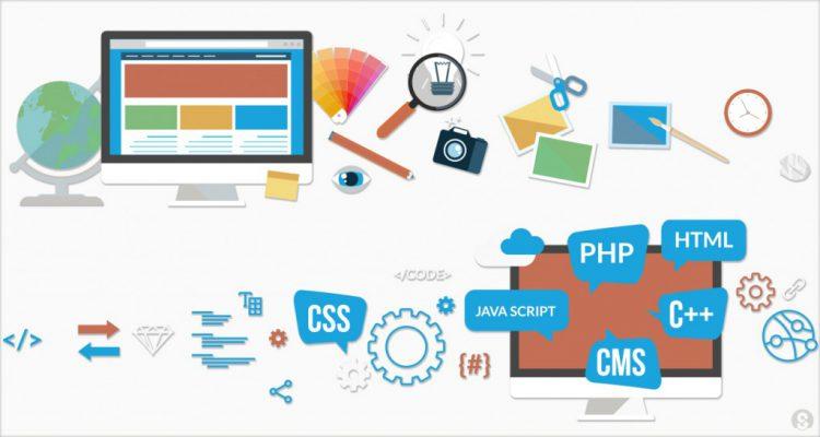 Mèo Con DTS giải pháp thiết kế website uy tín dành cho các doanh nghiệp