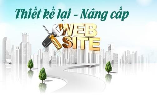 Mèo Con DTS - Dịch vụ nâng cấp website hiệu quả cho doanh nghiệp